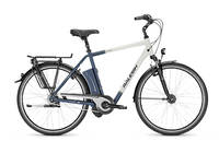 Raleigh - Dover i 8-G Wave 26'' (540Wh/15Ah)