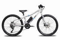 Ben-E-Bike - TWENTYFOUR E-POWER