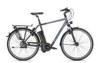 Raleigh - Dover i360 Harmony Tiefeinsteiger 26''