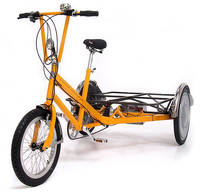 CYCLES MAXIMUS - CMDRIVE Costum FlatbedTrike