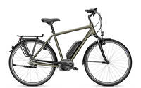 Raleigh - Cardiff B8 Diamant