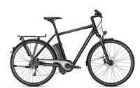 Raleigh - Stoker Impulse 9 Diamant 14.5 Ah
