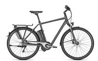 Raleigh - STOKER IMPULSE 10 Herren
