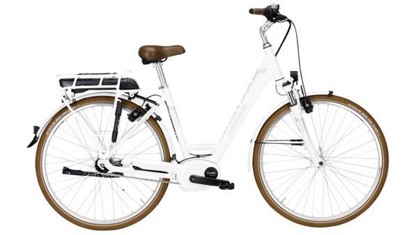 alle bikes von pegasus im direktvergleich kontaktdaten. Black Bedroom Furniture Sets. Home Design Ideas