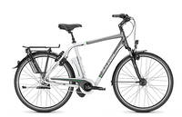 Raleigh - Dover IHS 8-G Wave 26'' (540Wh/15Ah)
